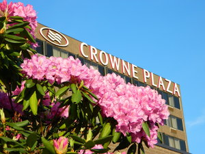 Exterior view - Crowne Plaza Hotel Danbury