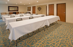 Meeting Facilities - Holiday Inn Express Hotel & Suites MO 76 Central Branson