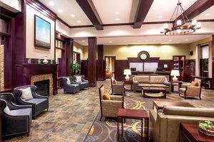 Lobby - Sheraton Hotel BWI Airport Linthicum