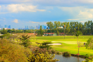 Golf - Sheraton Miami Airport Hotel