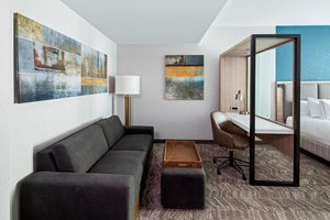 Suite - SpringHill Suites by Marriott Downtown Greenville