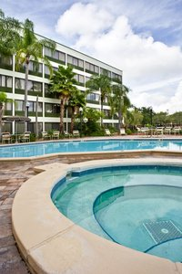 Pool - Holiday Inn Airport Clearwater