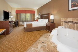 Suite - Holiday Inn Hotel & Suites Durango
