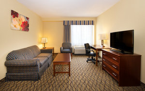 Suite - Holiday Inn Hotel & Suites Downtown Chicago