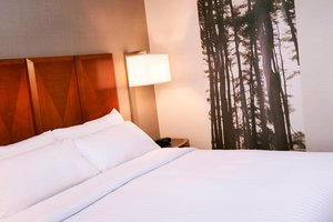 Room - Marriott Detroit Metro Airport Hotel Romulus