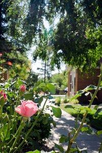 Other - Residence Inn by Marriott Fresno
