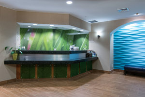 Lobby - SpringHill Suites by Marriott Greensboro