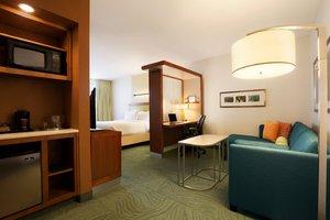 Suite - SpringHill Suites by Marriott North Ridgeland
