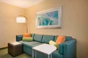 Suite - SpringHill Suites by Marriott Little Rock