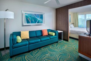 Suite - SpringHill Suites by Marriott Willow Grove