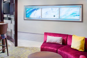 Other - SpringHill Suites by Marriott Carle Place