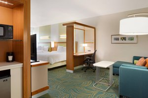 Suite - SpringHill Suites by Marriott Tuscaloosa