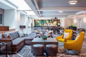 Bar - Renaissance Hotel Providence