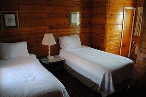 Room - Daunts Albatross Motel