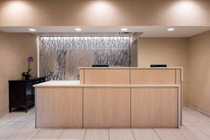 Lobby - Fairfield Inn by Marriott Loveland