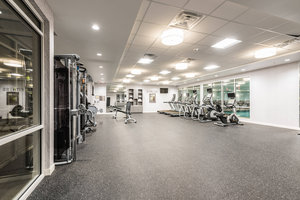 Recreation - TownePlace Suites by Marriott Woodfield Mall Schaumburg