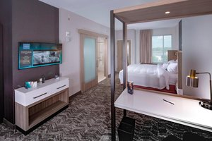 Suite - SpringHill Suites by Marriott Downtown Newark