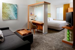 Suite - SpringHill Suites by Marriott Bakery Square Pittsburgh