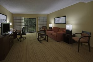 Suite - Courtyard by Marriott Hotel Southeast Tampa