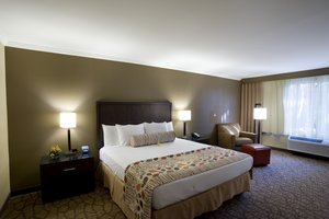 Room - Airtel Plaza Hotel & Conference Center Van Nuys