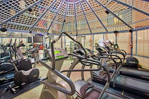 Fitness/ Exercise Room - Holiday Inn Yorkdale Toronto