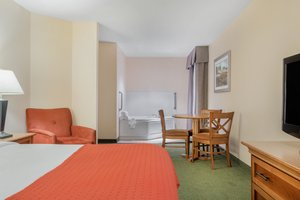 Suite - Holiday Inn Otsego