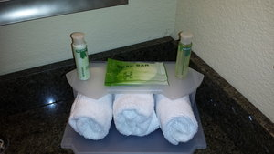 - Holiday Inn Express Hotel & Suites Wytheville