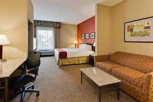 Suite - Holiday Inn Express Hotel & Suites Oldsmar