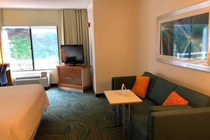 Suite - SpringHill Suites by Marriott West Mifflin
