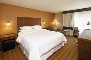 Room - Four Points by Sheraton Hotel Downtown Seattle
