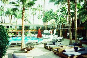 Pool - Hollywood Roosevelt Hotel Hollywood