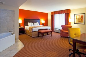 Suite - Holiday Inn Hotel & Suites Orange Park