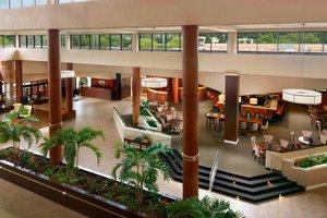 Lobby - Sheraton Hotel Airport Charlotte