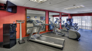 Fitness/ Exercise Room - Holiday Inn Express Greenville