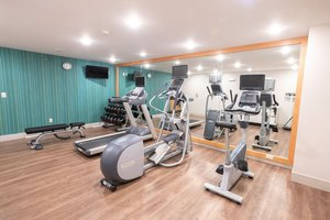 Fitness/ Exercise Room - Holiday Inn Express Hotel & Suites Iron Mountain