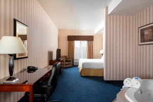 Room - Holiday Inn Express South Lathrop