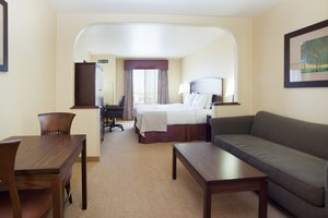 Suite - Holiday Inn Parker