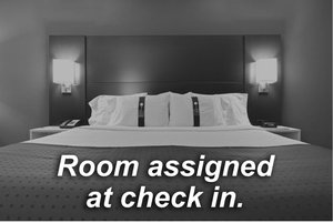 Room - Holiday Inn Express Port Richey