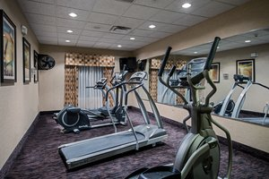 Fitness/ Exercise Room - Holiday Inn Express Hotel & Suites Niles