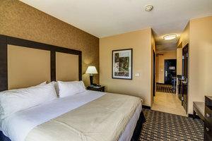Suite - Holiday Inn Northeast Arlington
