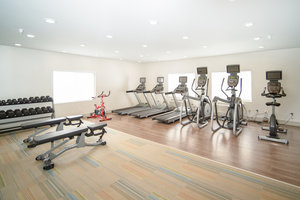 Fitness/ Exercise Room - Holiday Inn Express Houghton
