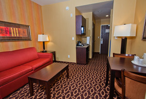 Suite - Holiday Inn Express Northeast Sacramento