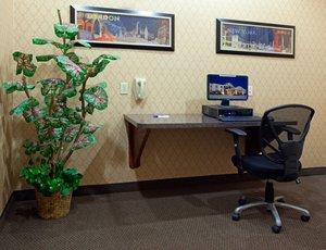 proam - Holiday Inn Express Hotel & Suites Vidor
