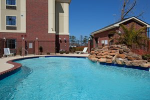 Pool - Holiday Inn Express Hotel & Suites Vidor