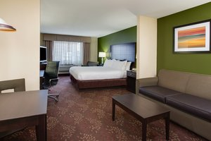 Suite - Holiday Inn Express Harvey