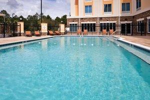 Pool - Holiday Inn Express Saraland