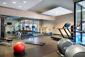 Fitness/ Exercise Room - Holiday Inn South County Center St Louis