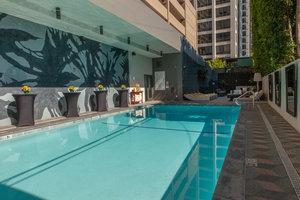 Pool - Kimpton Hotel Palomar Los Angeles