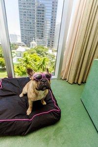 Exterior view - W Hotel Bayfront Miami