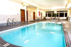 Pool - Holiday Inn Hotel & Suites Edmonton